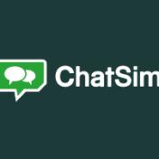 chatsim1
