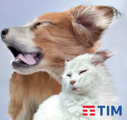 Photo of Tim Special Smartphone Edition: Minuti, Giga, Smartphone incluso a partire da 15 euro