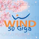 Wind All Inclusive Call Center