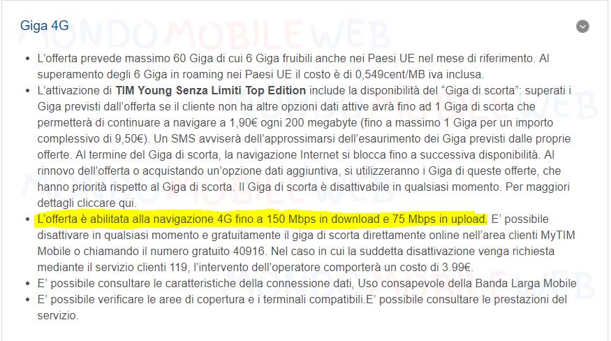 TIM 4G