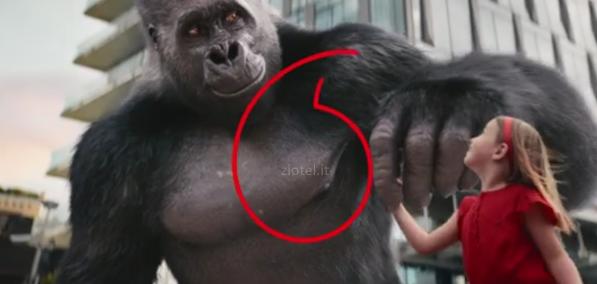 Gorilla bimba vodafone