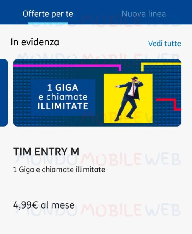 TIM Entry M