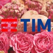 TIM Party Mamma