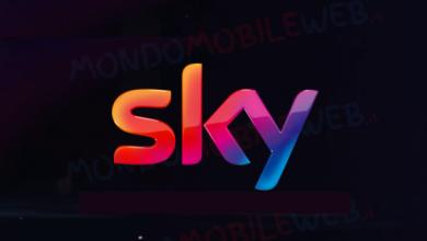 Sky rete fissa assistenza 170