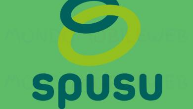 Photo of Spusu: come funziona Riserva Dati con Giga, minuti e SMS inutilizzati e come impostare l'APN