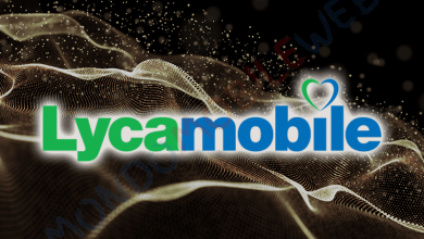 Lycamobile Port IN 100 Giga
