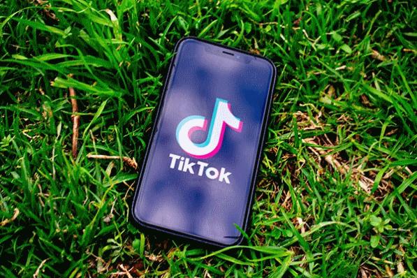 Social Italia LinkedIn TikTok