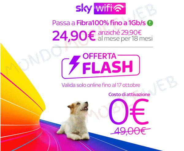 Fibra offerta Flash